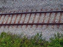 Alte Bahngleise durch das Holz Lizenzfreies Stockfoto