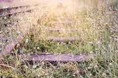 Alte Bahnstrecken mit Gras und Sonnenschein Stockfotografie