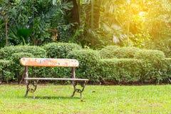 Alte Bank auf dem Gartengebiet mit Baum Lizenzfreies Stockfoto
