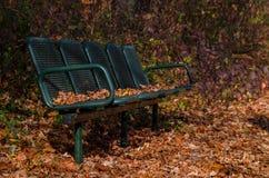 Alte Bank im Herbstpark Stockbild