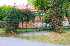 Alte Bank im Herbstpark Lizenzfreie Stockfotos