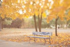 Alte Bank im Herbstpark Lizenzfreie Stockbilder