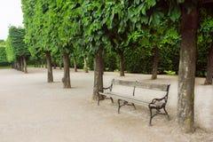 Alte Bank im Park mit grünen Bäumen Stockbilder