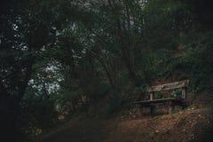 Alte Bank ist in einem dunklen Wald Lizenzfreie Stockbilder
