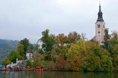 Alte barocke Kirche unter Herbstlaub auf Bled Insel in Slowenien Lizenzfreie Stockfotografie
