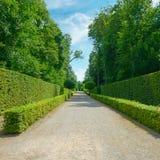 Alte barriere nel parco in Germania fotografia stock libera da diritti