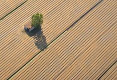 Alte Bauernhoffelder des Weizens und des Grases Lizenzfreies Stockbild