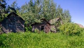 Alte Bauernhofhallen auf dem Grasland Stockfoto