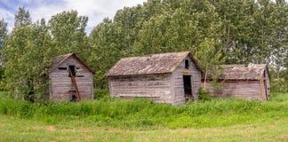 Alte Bauernhofhallen auf dem Grasland Stockfotografie