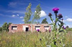 Alte Bauernhofruinen der Sommerzeit Lizenzfreie Stockfotos