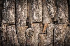 Alte Baumbeschaffenheit Stockfotos