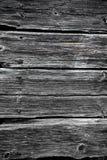 Alte Baumbeschaffenheit, Grey Colour Lizenzfreies Stockfoto