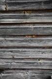 Alte Baumbeschaffenheit, Grey Colour Lizenzfreies Stockbild