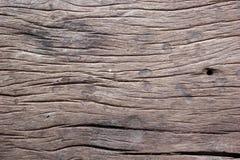 Alte Baumrinde als Hintergrund Stockfotografie