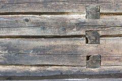 Alte Baumstammwand Stockfotos