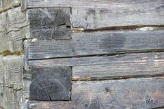 Alte Baumstammwand Stockbilder