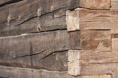 Alte Baumstammwand Stockfotografie