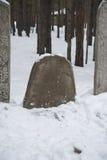 Alte Beerdigung Mongolekrieger Stockfotos