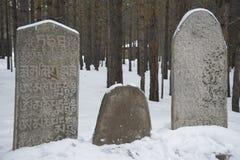 Alte Beerdigung Mongolekrieger Stockfotografie