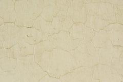 Alte Beige gemalte Wand Lizenzfreie Stockbilder