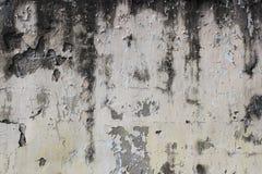 alte beige Wand mit Schalengips für Hintergrund Stockfotos