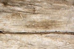 Alte Beschaffenheit des Holzes Lizenzfreie Stockfotos