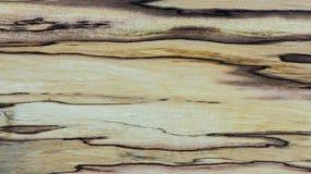 Alte Beschaffenheit - Mapple stabilisiertes Holz Stockbild