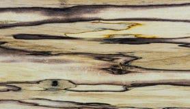 Alte Beschaffenheit - Mapple stabilisiertes Holz Lizenzfreie Stockbilder