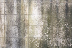 Alte Betonblockwand Stockbilder