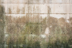 Alte Betonblockwand Stockbild