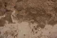 Alte Betonmauer Stockbilder