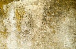 Alte Betonmauer der Beschaffenheit mit Resten des Gipses Stockbilder