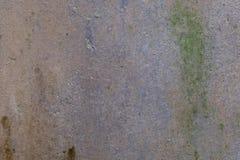 Alte Betonmauer mit Flechte oben Lizenzfreies Stockfoto