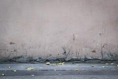 Alte Betonmauer mit getrockneten Blättern Lizenzfreie Stockbilder