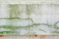 Alte Betonmauer mit langen Sprüngen und Moos Lizenzfreie Stockbilder