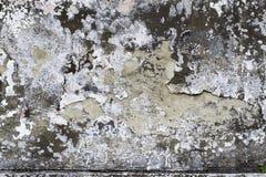 Alte Betonmauer mit Sprüngen Kann als Postkarte verwendet werden Lizenzfreies Stockfoto