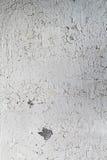 Alte Betonmauer mit weißer schäbiger Farbe Lizenzfreie Stockfotos