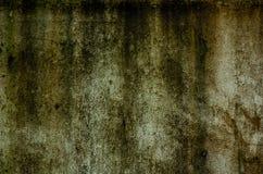 Alte Betonmauer und Moos Lizenzfreie Stockfotos