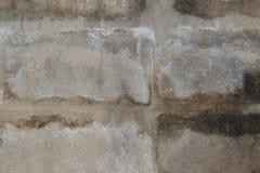 Alte Betonmauerabdeckung durch Flechte Zusammenfassungs-Beschaffenheits-Hintergrund Lizenzfreie Stockfotos
