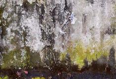 Alte Betonmauerweinlesebeschaffenheit Lizenzfreie Stockbilder