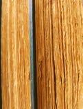 Alte Bibliothek Lizenzfreie Stockfotografie