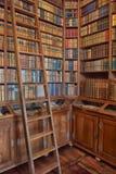 Alte Bibliothek im Schloss Stockfotografie