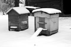 Alte Bienenbienenstöcke im Winter in Schwarzweiss Stockfotografie