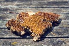 Alte Bienenbienenwabe auf Holztisch am sonnigen Tag Lizenzfreie Stockfotos