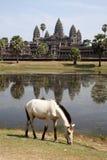 Alte birmanische Pagode Stockbild