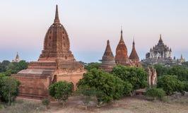 Alte birmanische Ziegelsteintempel in den grünen Bäumen an Stockbild