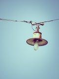 Alte Birne, die am Himmel hängt Stockbilder