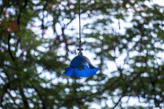 Alte blaue Beleuchtungslampe Stockfoto
