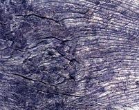 Alte blaue getonte Baumschnittbeschaffenheit Lizenzfreie Stockfotografie