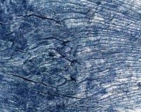 Alte blaue getonte Baumschnittbeschaffenheit Stockfoto